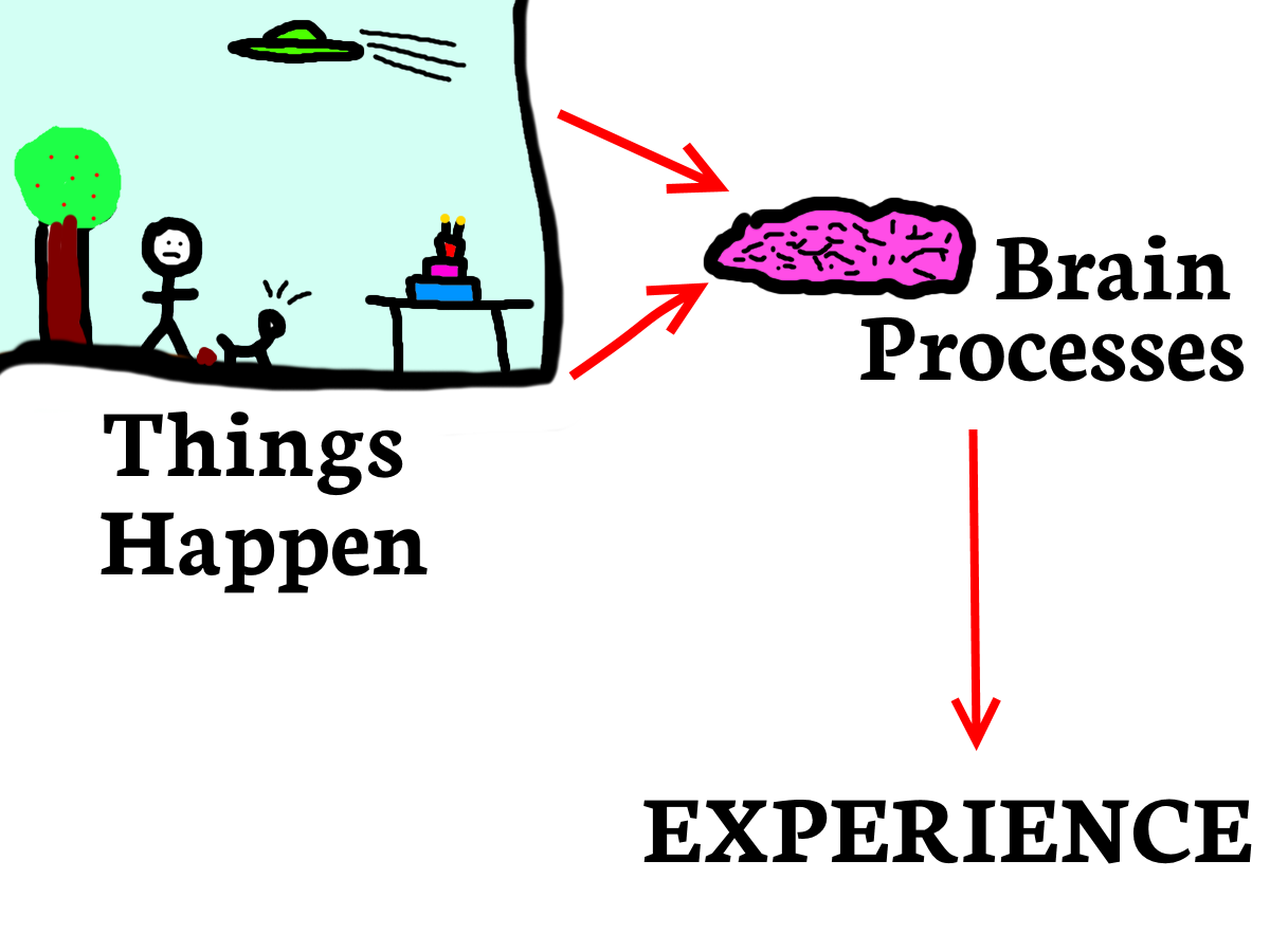ThingsHappenBrainProcesses